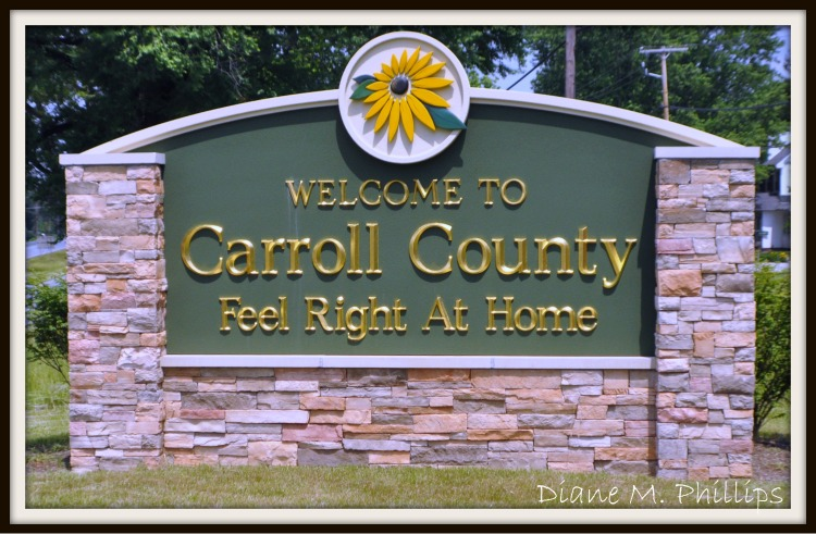 Carroll_County_Sign_Picnik_SMALL